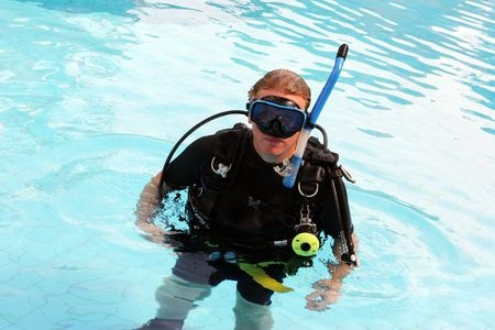 Pool Inspection And Diving Plumperfectpools Com