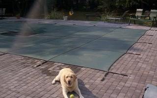 Loop Loc Safety Pool Covers Plumperfectpools Com